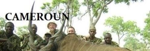 Cameroun Banner #7