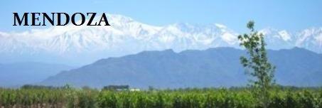 Mendoza banner #3