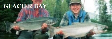 Glacier Bay banner #2