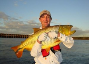 Randy's Golden Dorado